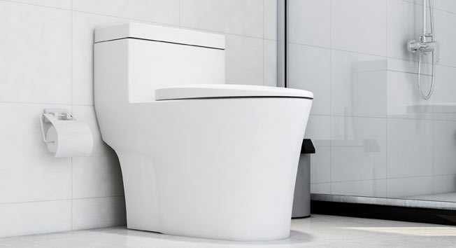 Toilet Repair in Avon